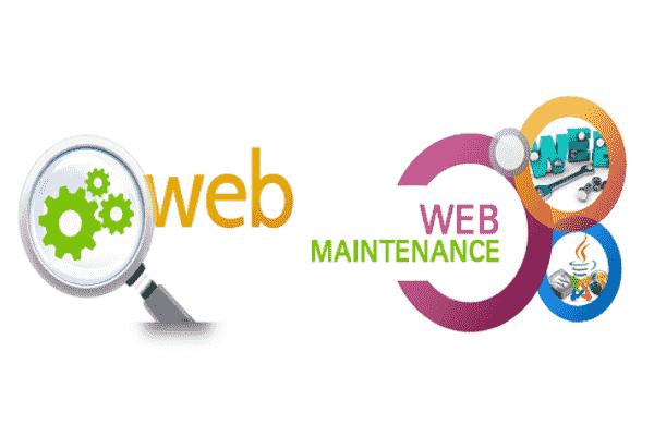Website Maintenance Services India
